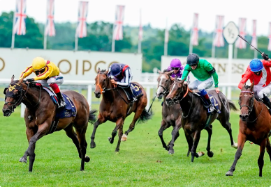 Top Betting Sites UK to bet on Horse Racing